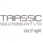 Triassic Solutions Off Campus Drive | Programmer Trainee |24 June 2018